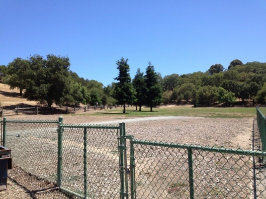 Paso Nogal Park -- A good size dog park for both large and small dogs